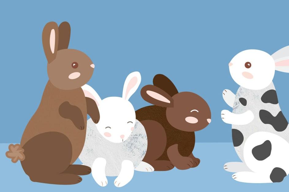 Bunnies illustration